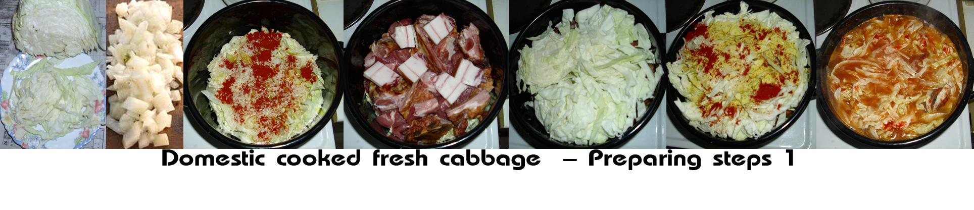 Domestic cooked fresh cabbage prepare1