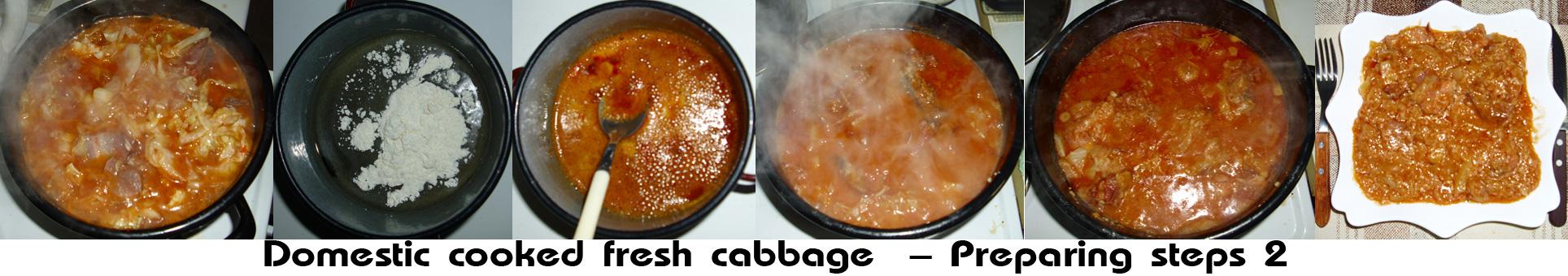 Domestic cooked fresh cabbage prepare2