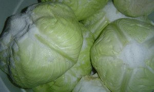 Cabbage Heads Pickling